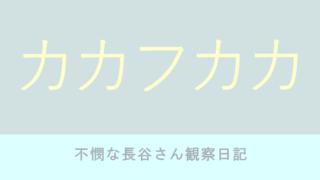 カカフカカ6巻 石田拓実【ネタバレ感想】不憫な長谷さん観察日記
