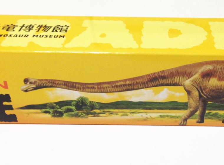 福井県立恐竜博物館 ロングバームクーヘン フクイティタン・ニッポネンシス