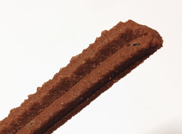 福井県立恐竜博物館 チョコスティッククッキー