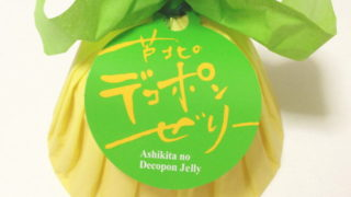 【熊本おみやげ】果肉たっぷり!みずみずしい『芦北のデコポンゼリー』